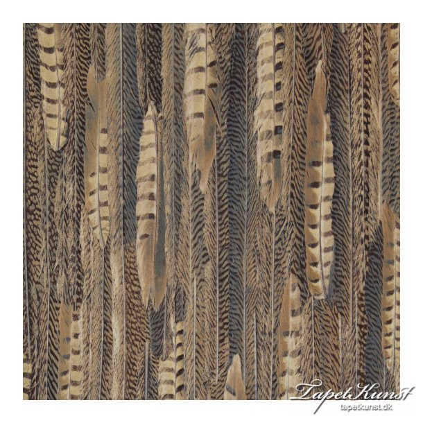 Curious - Feathers - Brown