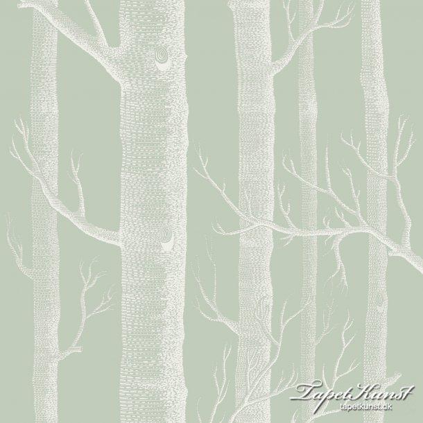 Woods - Old Olive