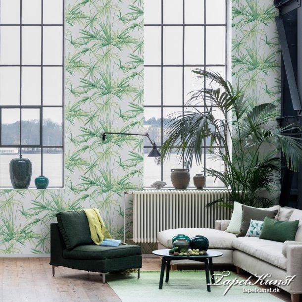 Bella Palm - Grøn